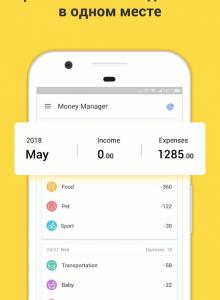 Денежный менеджер - скриншот 1