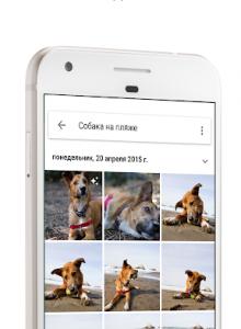 Google Фото - скриншот 4